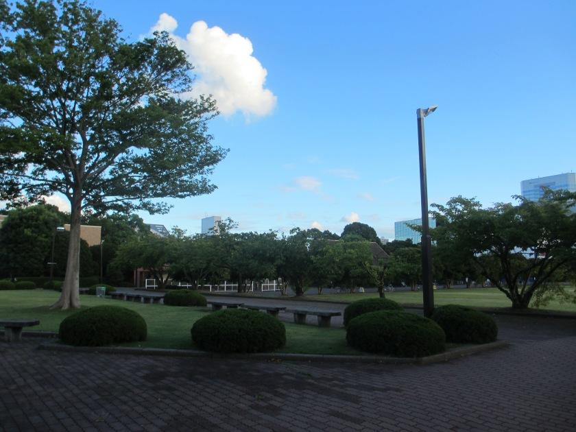 Garden area at KUIS